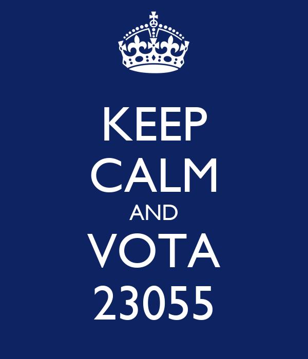 KEEP CALM AND VOTA 23055