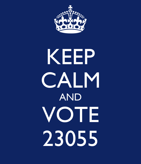 KEEP CALM AND VOTE 23055