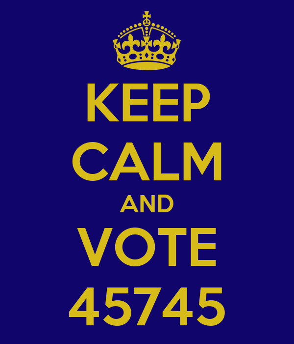 KEEP CALM AND VOTE 45745