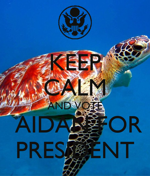 KEEP CALM AND VOTE  AIDAN FOR PRESIDENT