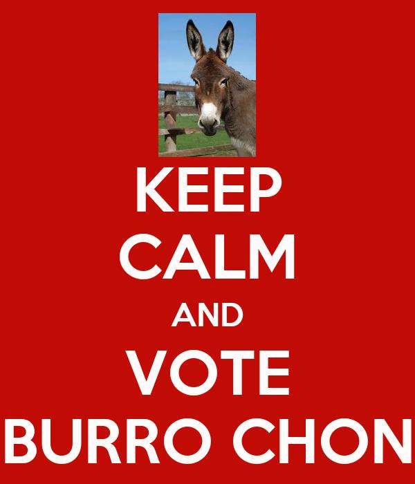 KEEP CALM AND VOTE BURRO CHON
