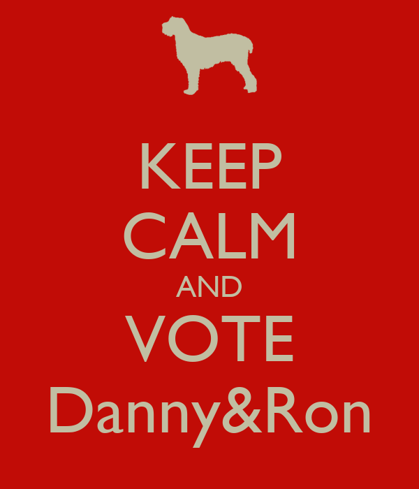 KEEP CALM AND VOTE Danny&Ron