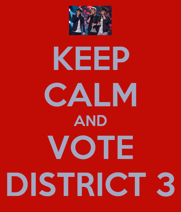 KEEP CALM AND VOTE DISTRICT 3