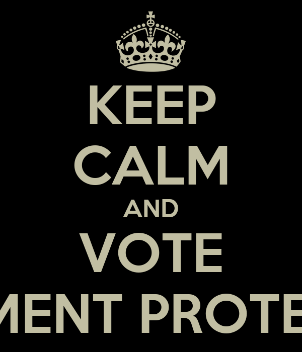 KEEP CALM AND VOTE DOCUMENT PROTECTORS