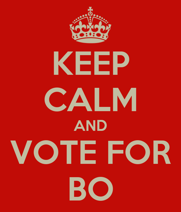 KEEP CALM AND VOTE FOR BO