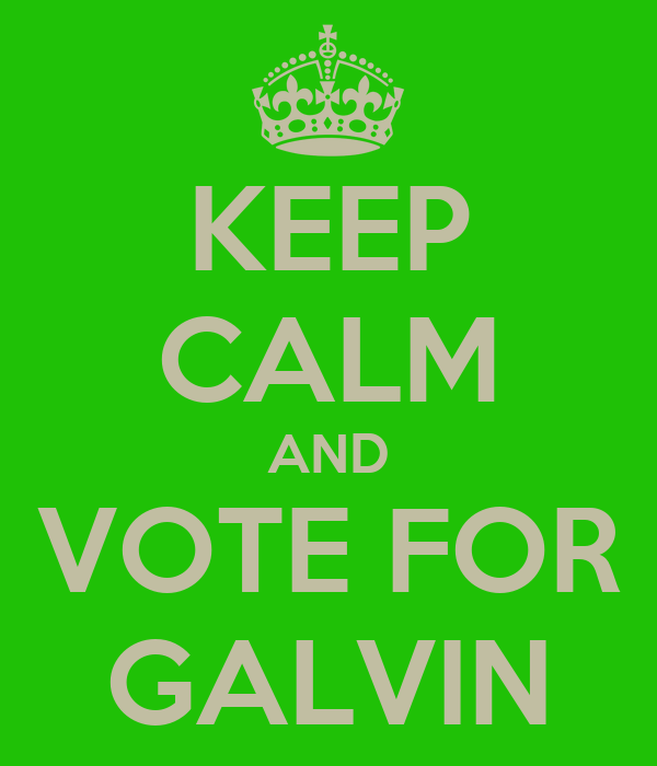 KEEP CALM AND VOTE FOR GALVIN