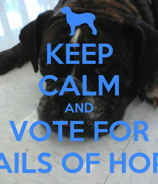 KEEP CALM AND VOTE FOR TAILS OF HOPE