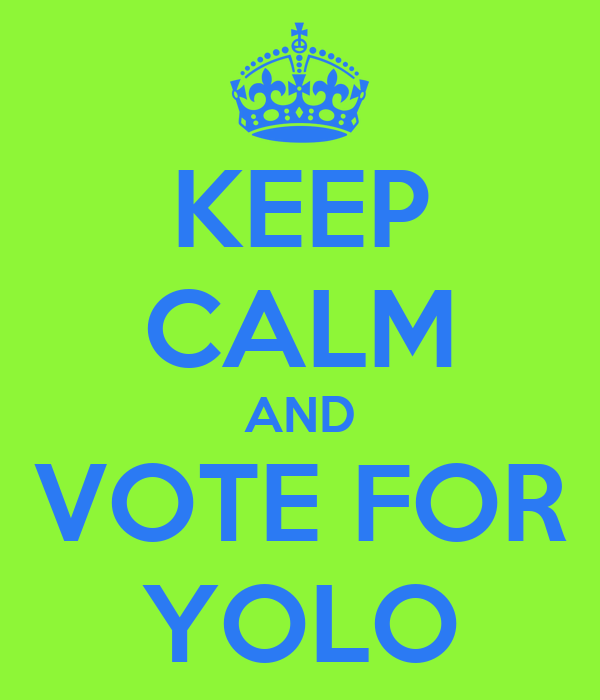KEEP CALM AND VOTE FOR YOLO