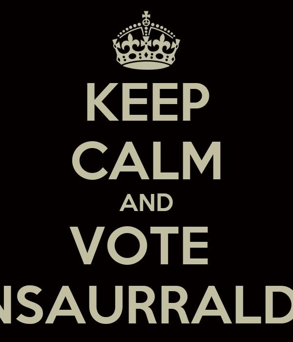 KEEP CALM AND VOTE  INSAURRALDE