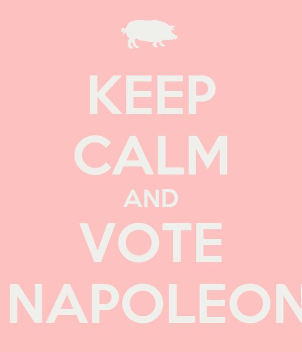 KEEP CALM AND VOTE   NAPOLEON