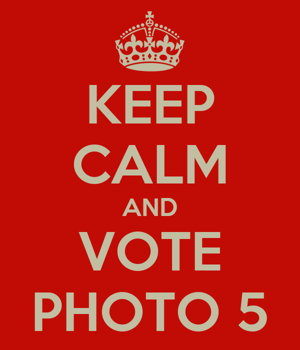 KEEP CALM AND VOTE PHOTO 5