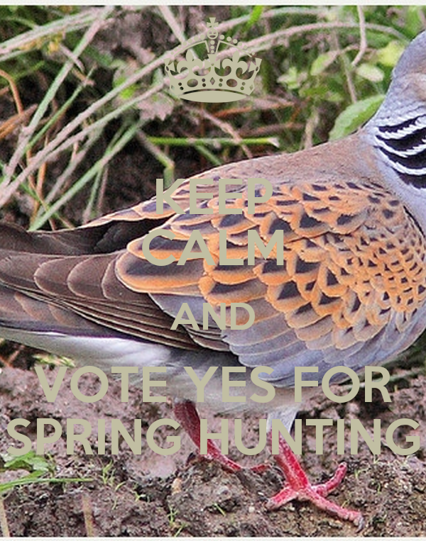 KEEP CALM AND VOTE YES FOR SPRING HUNTING