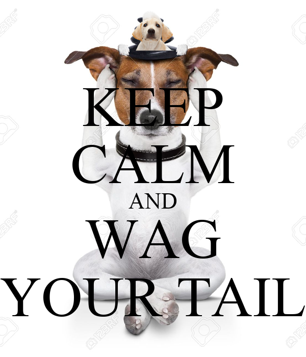KEEP CALM AND WAG YOUR TAIL
