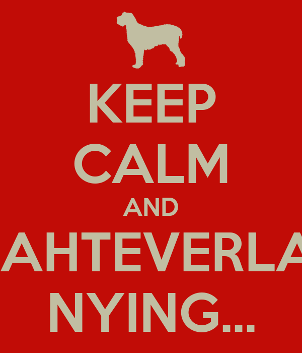 KEEP CALM AND WAHTEVERLAH NYING...