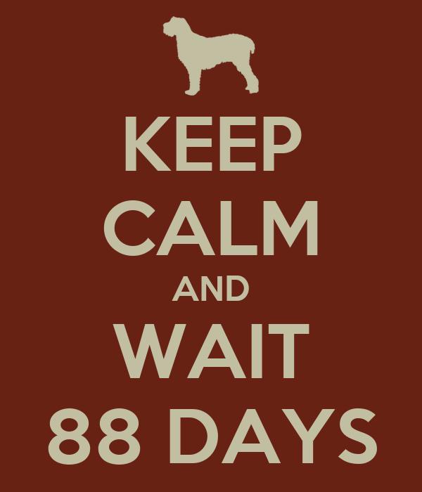 KEEP CALM AND WAIT 88 DAYS