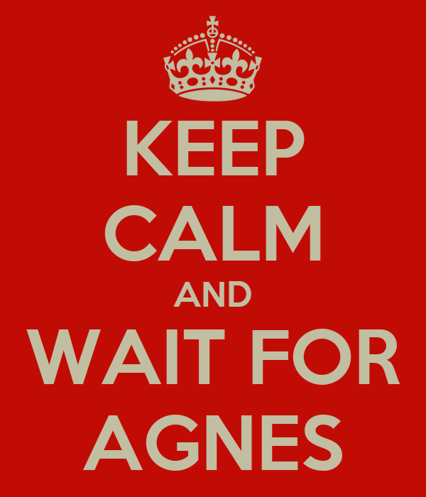 KEEP CALM AND WAIT FOR AGNES