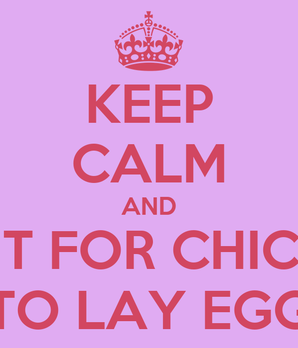 KEEP CALM AND WAIT FOR CHICKEN TO LAY EGG