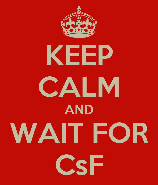 KEEP CALM AND WAIT FOR CsF