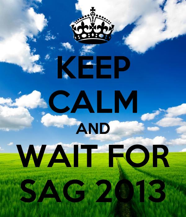 KEEP CALM AND WAIT FOR SAG 2013