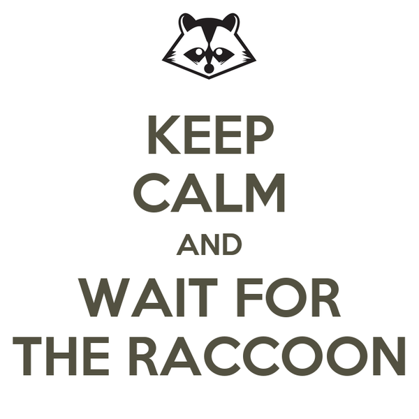 KEEP CALM AND WAIT FOR THE RACCOON