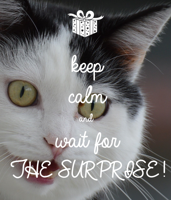 keep calm and wait for THE SURPRISE!