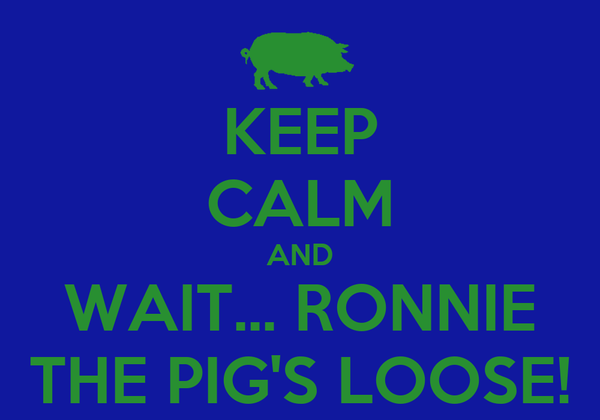 KEEP CALM AND WAIT... RONNIE THE PIG'S LOOSE!