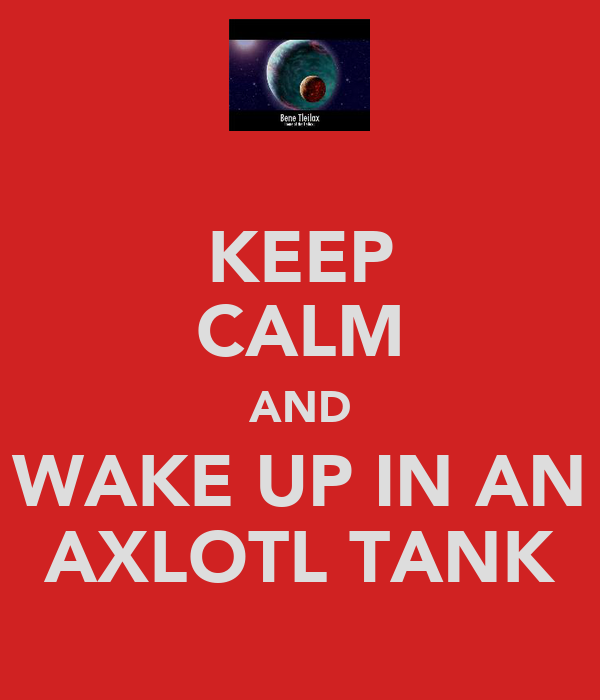 KEEP CALM AND WAKE UP IN AN AXLOTL TANK