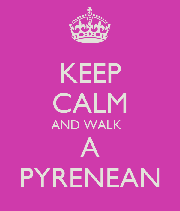 KEEP CALM AND WALK   A PYRENEAN
