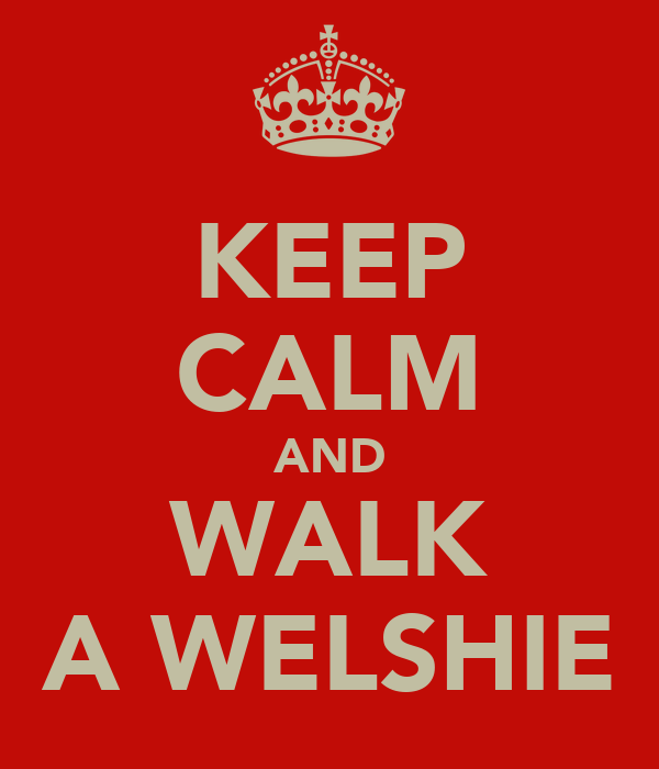 KEEP CALM AND WALK A WELSHIE