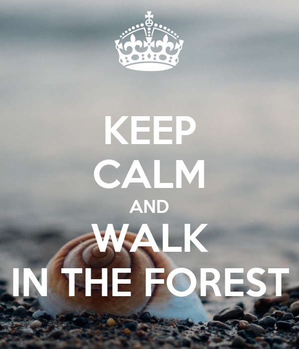 KEEP CALM AND WALK IN THE FOREST