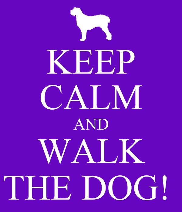 KEEP CALM AND WALK THE DOG!
