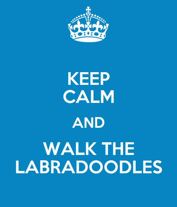 KEEP CALM AND WALK THE LABRADOODLES