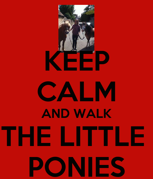 KEEP CALM AND WALK THE LITTLE  PONIES
