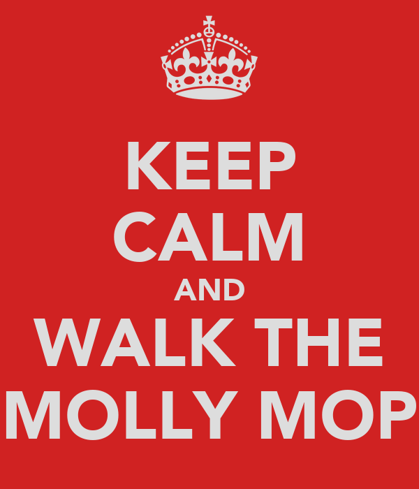 KEEP CALM AND WALK THE MOLLY MOP
