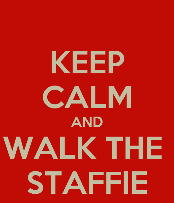 KEEP CALM AND WALK THE  STAFFIE