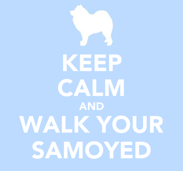 KEEP CALM AND WALK YOUR SAMOYED