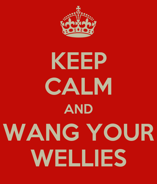 KEEP CALM AND WANG YOUR WELLIES