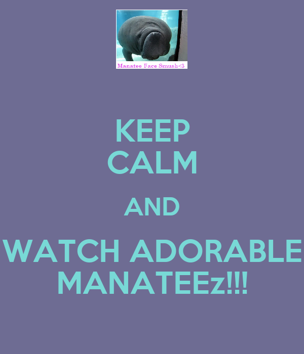 KEEP CALM AND WATCH ADORABLE MANATEEz!!!