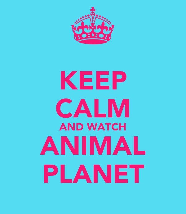 KEEP CALM AND WATCH ANIMAL PLANET