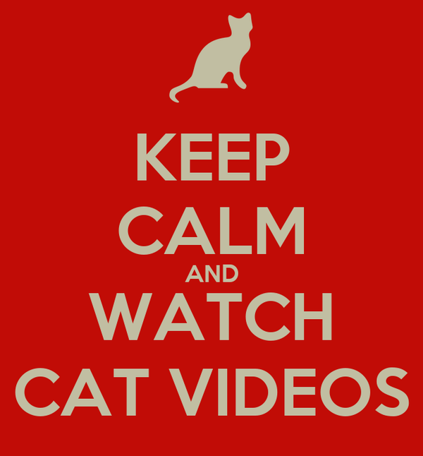 KEEP CALM AND WATCH CAT VIDEOS