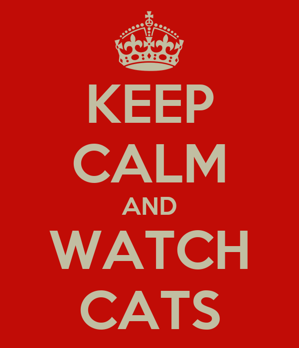 KEEP CALM AND WATCH CATS