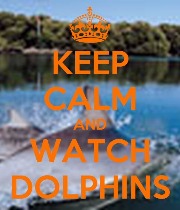 KEEP CALM AND WATCH DOLPHINS