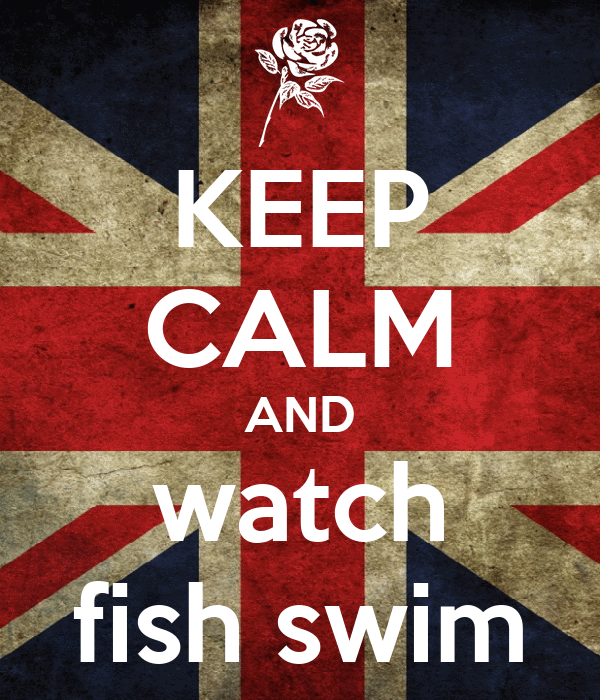 KEEP CALM AND watch fish swim
