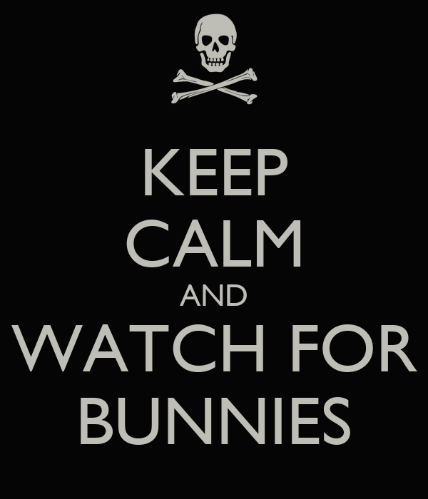 KEEP CALM AND WATCH FOR BUNNIES