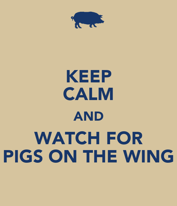 KEEP CALM AND WATCH FOR PIGS ON THE WING