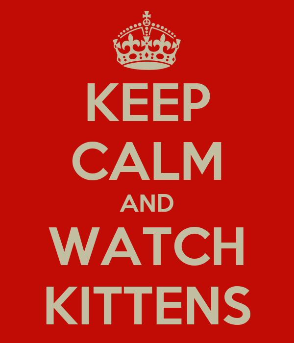 KEEP CALM AND WATCH KITTENS
