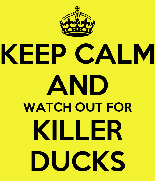 KEEP CALM AND WATCH OUT FOR KILLER DUCKS