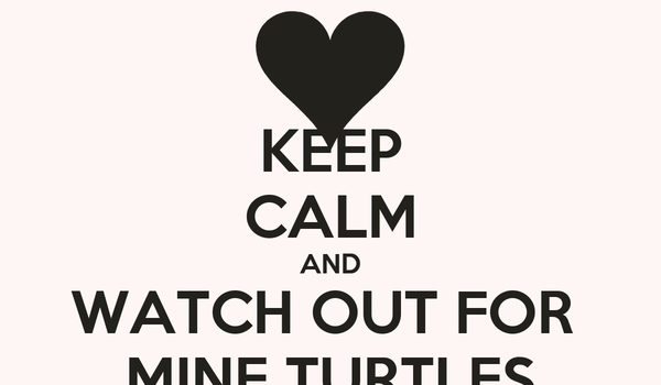 KEEP CALM AND WATCH OUT FOR  MINE TURTLES