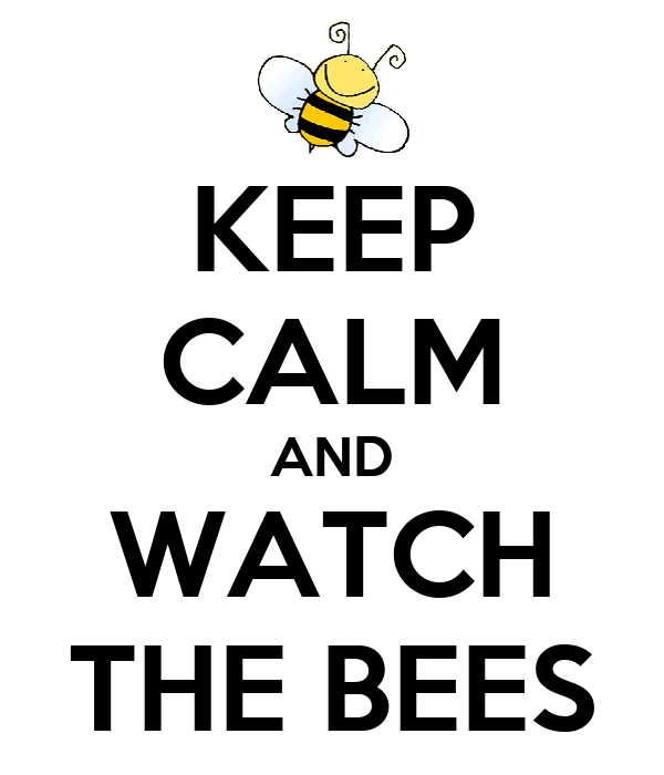 KEEP CALM AND WATCH THE BEES