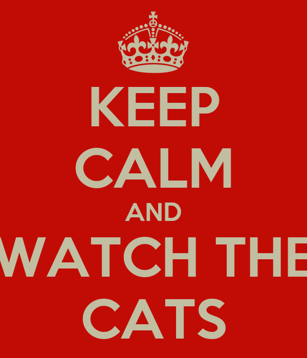 KEEP CALM AND WATCH THE CATS